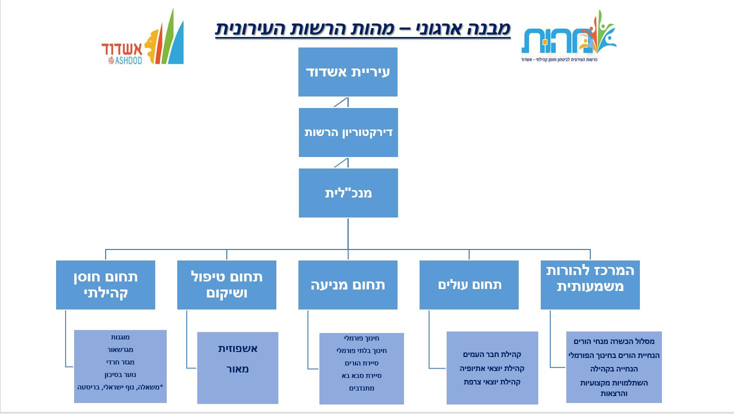 מבנה ארגוני מהות